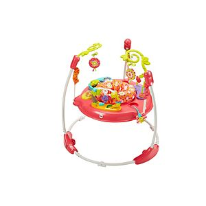 Pink Petals Jumperoo™