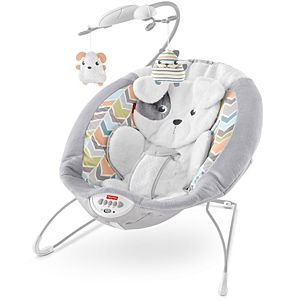 Sweet Snugapuppy™ Dreams Deluxe Bouncer