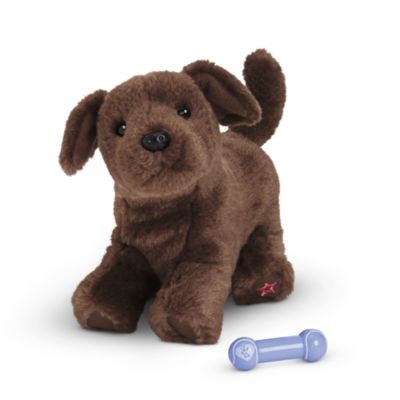 Chocolate Lab Puppy Truly Me American Girl