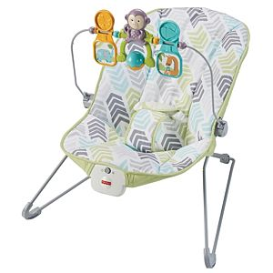 327bc546ff5 Baby Calming Vibrations Bouncer