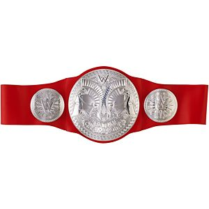 WWE® RAW® Tag Team Championship Title