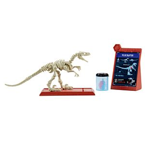 Jurassic World Stem Fossil Strikers™ Velociraptor