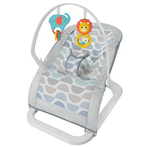 Fun N Fold Bouncer Infant Seat Dxy19 Fisher Price