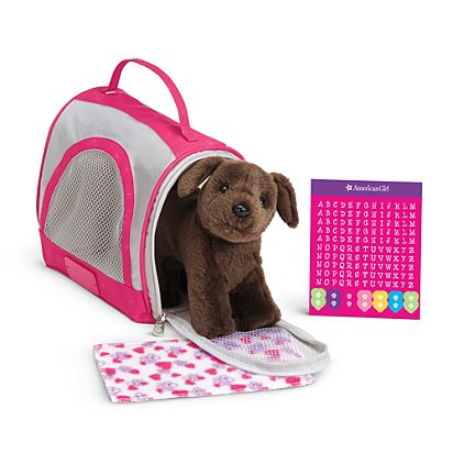 Travel Kennel